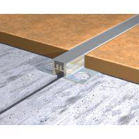 MSA100-Profil de dilatatie Genesis,din aluminiu cu insertie de cauciuc